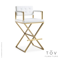 Director White Gold Steel Barstool | Tov Furniture