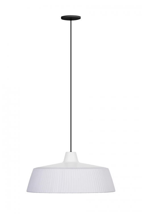 Woody Pendant Light | Carpyen