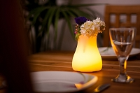 Olio LED Indoor/Outdoor Lamp | Smart & Green