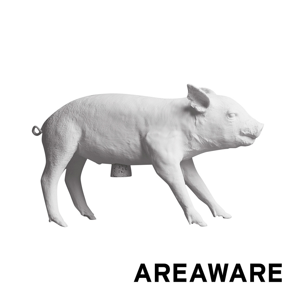 Reality Bank in Form of Pig White Matte | Areaware