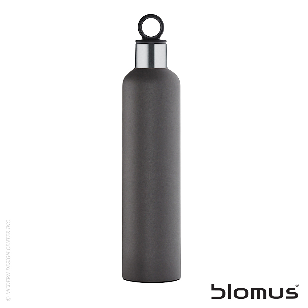 2Go 25-oz Stainless Steel Water Bottle | Blomus