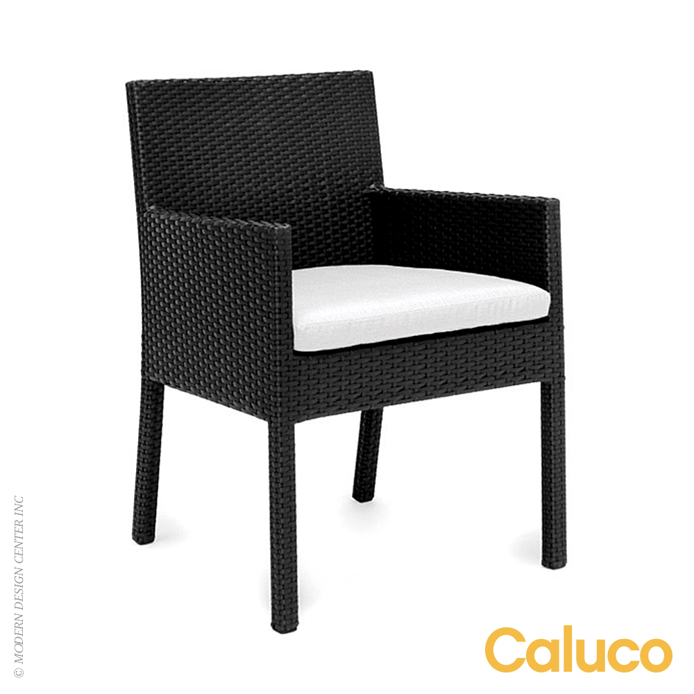 Dijon Dining Arm Chair Set of 2 | Caluco Patio Furniture