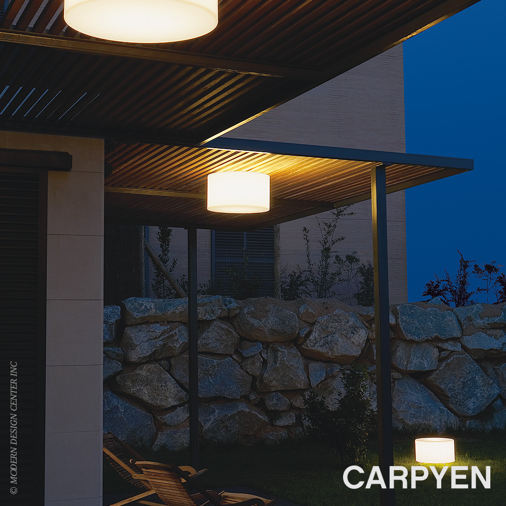 Harry Outdoor Ceiling Light | Carpyen