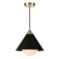 Hilton Pendant Blackened Brass and Natural Brass | Regina Andrew