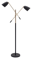 Tanner Floor Lamp in Matte Black and Brass | Zuo
