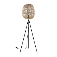 Stein World Cold Spring Floor Lamp