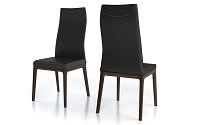 Amy Chair Set of 2 | Colibri
