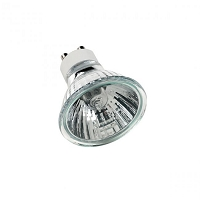 MR16 Halogen Lamp 120V | WAC Lighting