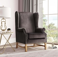 Tov Furniture Nora Grey Velvet Chair -  Clearance