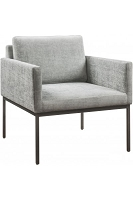 Canton Grey Velvet Chair | Tov Furniture