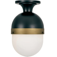 Crystorama CAP-8500-MK-TG Capsule Outdoor Ceiling Light