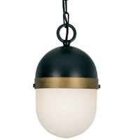 Crystorama CAP-8505-MK-TG Capsule Outdoor Pendant Light