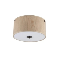 Up Flush Mount 10